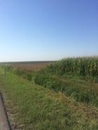 Kovačica Okolina 30.000€ Poljoprivredno zemljište Prodaja