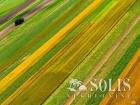 Pančevo  Dogovor Poljoprivredno zemljište Prodaja