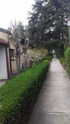 Beograd Rakovica 99.000€ Kuća Prodaja