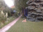 Novi Sad Telep 121.500€ Kuća Prodaja