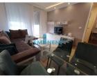Beograd Novi Beograd 430€ Stan Izdavanje