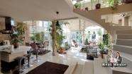 Novi Sad Telep 300.000€ Kuća Prodaja