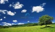 Beograd Sopot 13.500€ Poljoprivredno zemljište Prodaja